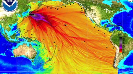 Fukushima Contamination Pacific Ocean