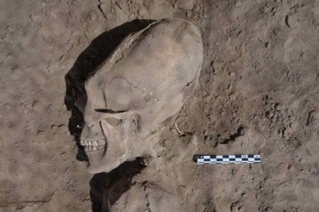 Nephilim Skull Mexico Photo by Cristina Garcia Moreno INAH2 450x299 13 Nephilim Skulls Found In Mexico?