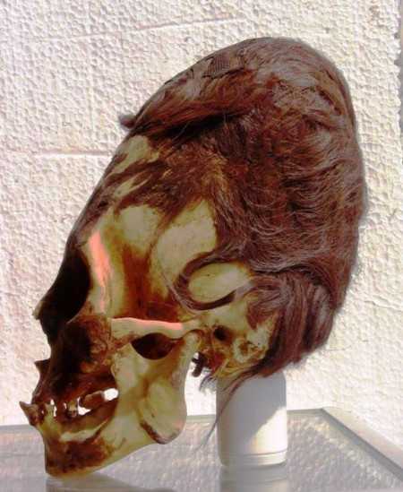 Elongated Skull Peru - Red Hair