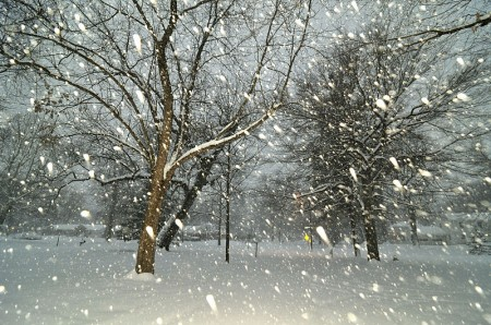 Falling Snow Photo by Serge Melki 450x298 Why Is Radioactive Snow Falling In Missouri?