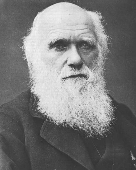 Charles Darwin Creation Evolution